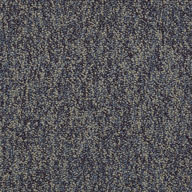 Eternity Shaw No Limits Carpet Tile