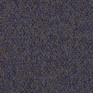 Expansive Shaw No Limits Carpet Tile