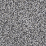 Freedom Shaw No Limits Carpet Tile