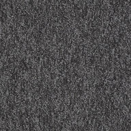 Wild Card Shaw No Limits Carpet Tile