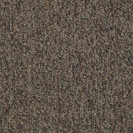 Border Shaw No Limits Carpet Tile