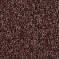 Abundance Shaw No Limits Carpet Tile