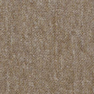 MajorityShaw Capital III Carpet Tile
