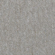 Power PlayShaw Capital III Carpet Tile