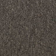 EminenceShaw Capital III Carpet Tile