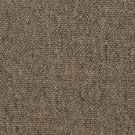 Contract Shaw Consultant Carpet Tile