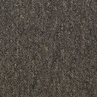 Network Shaw Consultant Carpet Tile