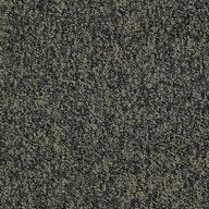 Hold The Line Shaw Sound Advice Carpet Tile