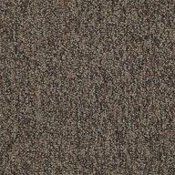 Plan Ahead Shaw Sound Advice Carpet Tile