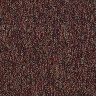 Practice Shaw Sound Advice Carpet Tile