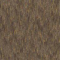 Photo Album Shaw Sync Up Carpet TIle