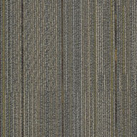 To Harmonize Shaw Unify Carpet Tile