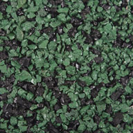 Green/Black Paver Tiles - West Coast