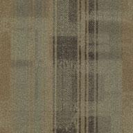 Director Shaw Doers Carpet Tile