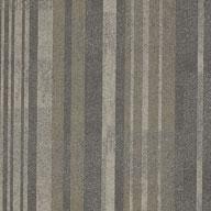 Explorer Shaw Doers Carpet Tile