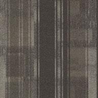 Sire Shaw Doers Carpet Tile