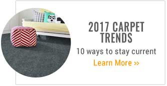 2017 Carpet Trends