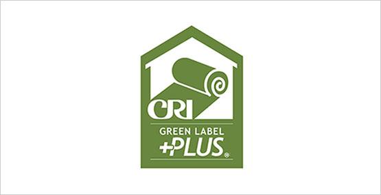 Shaw static carpet tiles colorful floor carpet tiles for Green label carpet